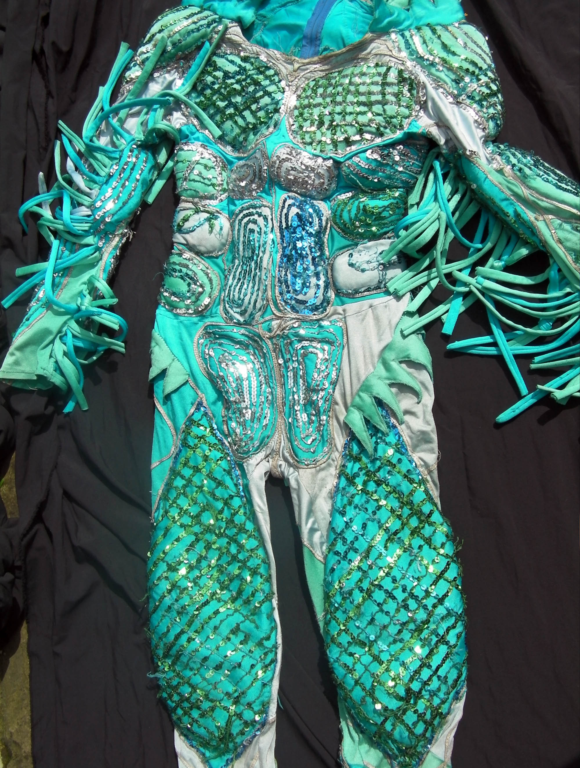 Close-up of the costume from the Enchantress Show